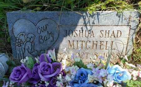 MITCHELL, JOSHUA SHAD - Texas County, Missouri   JOSHUA SHAD MITCHELL - Missouri Gravestone Photos