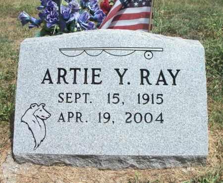 RAY, ARTIE YOUNG - Texas County, Missouri | ARTIE YOUNG RAY - Missouri Gravestone Photos