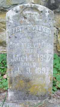 WALKER, INFANT SON - Texas County, Missouri | INFANT SON WALKER - Missouri Gravestone Photos