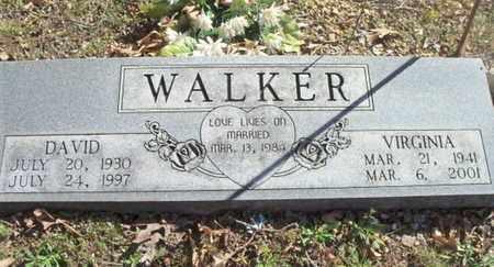 WALKER, VIRGINIA - Texas County, Missouri   VIRGINIA WALKER - Missouri Gravestone Photos