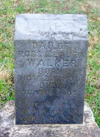 WALKER, LUCY ETHEL - Texas County, Missouri | LUCY ETHEL WALKER - Missouri Gravestone Photos