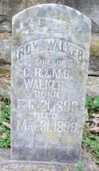 WALKER, ROY - Texas County, Missouri | ROY WALKER - Missouri Gravestone Photos