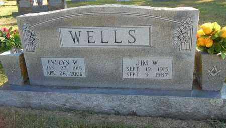 WELLS, JIM W. - Texas County, Missouri | JIM W. WELLS - Missouri Gravestone Photos