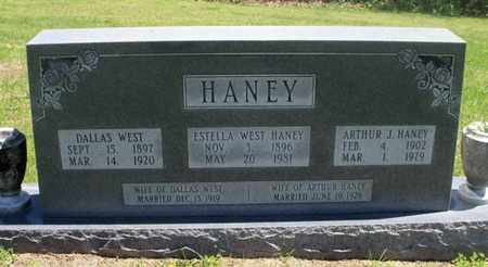 CASTOR HANEY, ESTELLA - Texas County, Missouri | ESTELLA CASTOR HANEY - Missouri Gravestone Photos