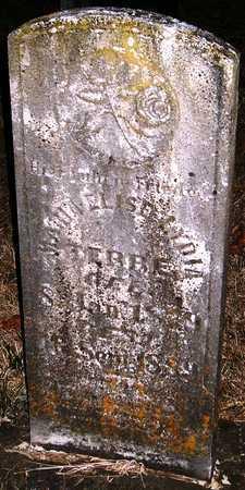 TEBBE, MARIA ELISE LYDIA - Warren County, Missouri   MARIA ELISE LYDIA TEBBE - Missouri Gravestone Photos