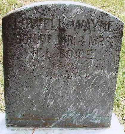 BOICE, LOWELL WAYNE - Webster County, Missouri | LOWELL WAYNE BOICE - Missouri Gravestone Photos