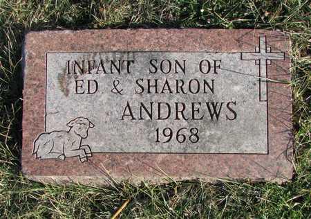ANDREWS, INFANT SON - Worth County, Missouri   INFANT SON ANDREWS - Missouri Gravestone Photos