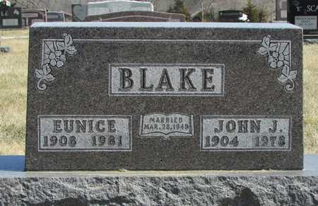 BLAKE, JOHN J. - Worth County, Missouri | JOHN J. BLAKE - Missouri Gravestone Photos