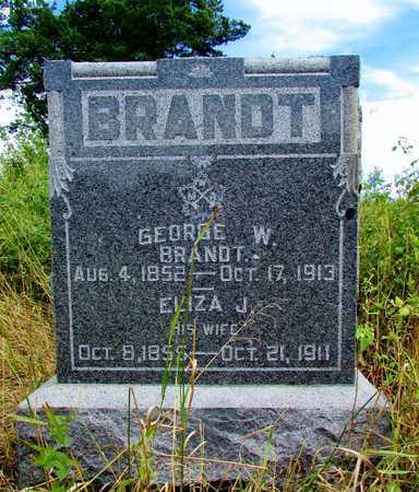 READ BRANDT, ELIZA J - Worth County, Missouri | ELIZA J READ BRANDT - Missouri Gravestone Photos