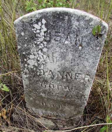 DANNER, SUSAN - Worth County, Missouri | SUSAN DANNER - Missouri Gravestone Photos
