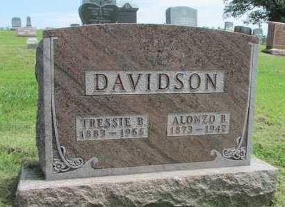 DAVIDSON, ALONZO B. - Worth County, Missouri | ALONZO B. DAVIDSON - Missouri Gravestone Photos