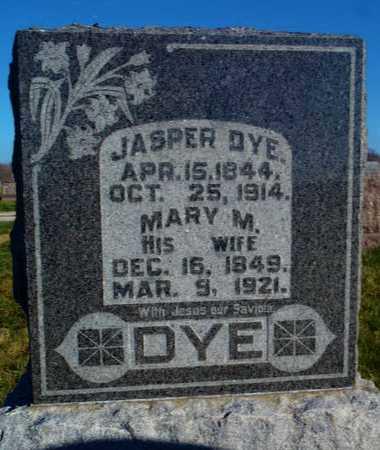 DYE, MARY MARTICIA - Worth County, Missouri | MARY MARTICIA DYE - Missouri Gravestone Photos