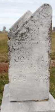 LYNCH, JOHN ALLEN - Worth County, Missouri | JOHN ALLEN LYNCH - Missouri Gravestone Photos