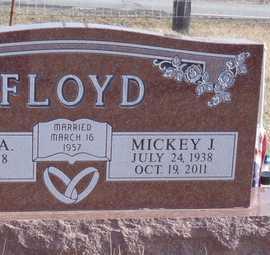 FLOYD, MICKEY J. - Worth County, Missouri | MICKEY J. FLOYD - Missouri Gravestone Photos