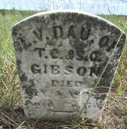GIBSON, L.V. - Worth County, Missouri | L.V. GIBSON - Missouri Gravestone Photos