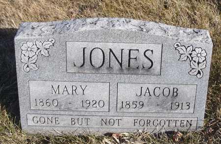 JONES, MARY - Worth County, Missouri   MARY JONES - Missouri Gravestone Photos