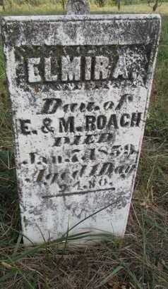 ROACH, ELMIRA - Worth County, Missouri | ELMIRA ROACH - Missouri Gravestone Photos