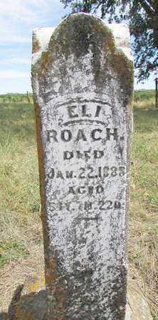 ROACH, ELI - Worth County, Missouri | ELI ROACH - Missouri Gravestone Photos