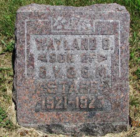STABE, WAYLAND O. - Worth County, Missouri | WAYLAND O. STABE - Missouri Gravestone Photos