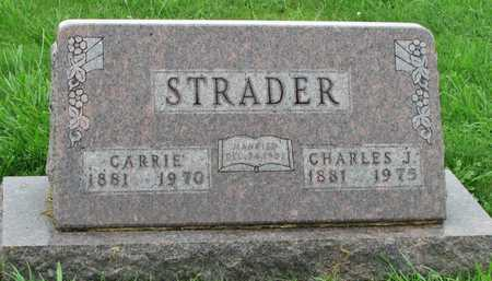 WILCOX  STRADER, CARRIE - Worth County, Missouri | CARRIE WILCOX  STRADER - Missouri Gravestone Photos