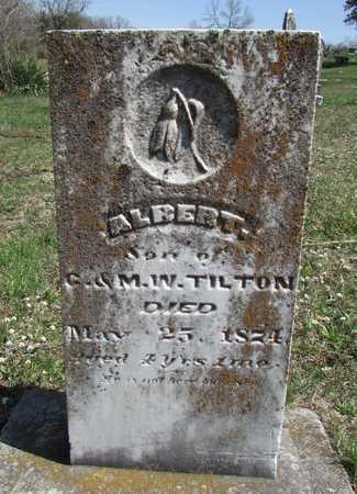TILTON, ALBERT - Worth County, Missouri | ALBERT TILTON - Missouri Gravestone Photos