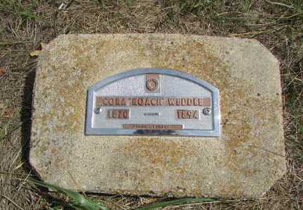ROACH WEDDLE, CORA - Worth County, Missouri | CORA ROACH WEDDLE - Missouri Gravestone Photos