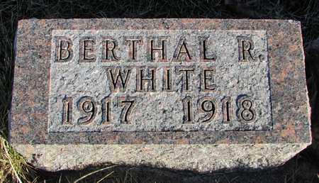 WHITE, BERTHAL R. - Worth County, Missouri | BERTHAL R. WHITE - Missouri Gravestone Photos