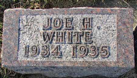 WHITE, JOE H. - Worth County, Missouri   JOE H. WHITE - Missouri Gravestone Photos