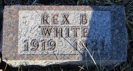 WHITE, REX B. - Worth County, Missouri | REX B. WHITE - Missouri Gravestone Photos