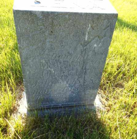 UTECHT, LENA - Adams County, Nebraska | LENA UTECHT - Nebraska Gravestone Photos
