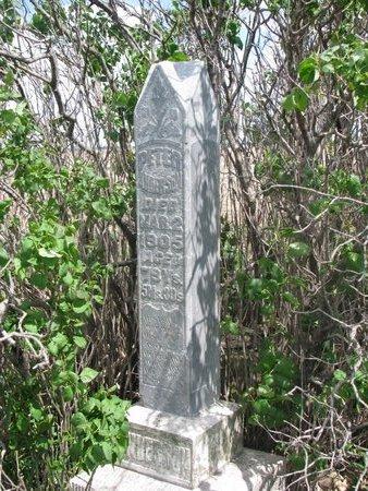 ANDERSON, PETER - Antelope County, Nebraska | PETER ANDERSON - Nebraska Gravestone Photos
