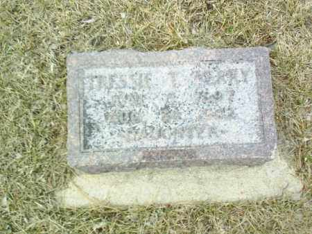 PERRY, TRESSIE T - Antelope County, Nebraska | TRESSIE T PERRY - Nebraska Gravestone Photos