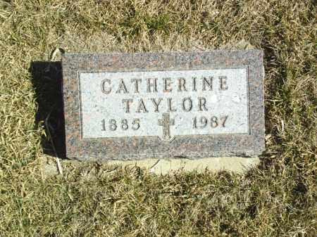 TAYLOR, CATHERINE - Antelope County, Nebraska | CATHERINE TAYLOR - Nebraska Gravestone Photos