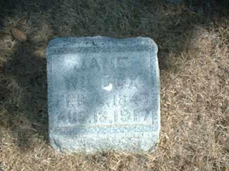 WILCOX, JANE - Antelope County, Nebraska | JANE WILCOX - Nebraska Gravestone Photos