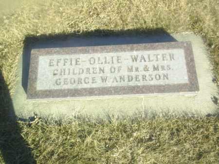 ANDERSON, EFFIE - Boone County, Nebraska | EFFIE ANDERSON - Nebraska Gravestone Photos