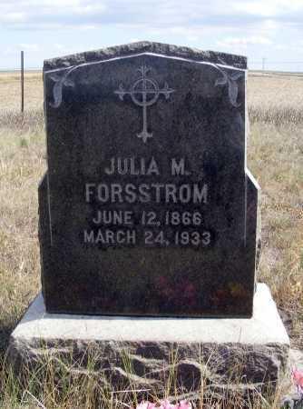 FORSSTROM, JULIA M. - Box Butte County, Nebraska   JULIA M. FORSSTROM - Nebraska Gravestone Photos