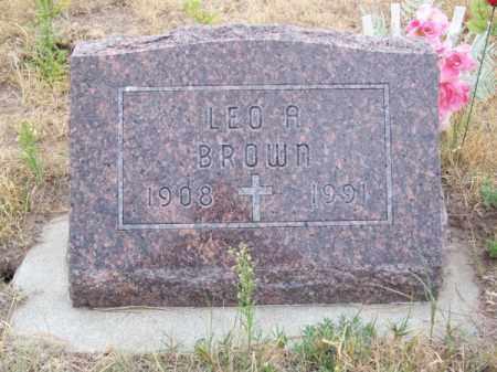 BROWN, LEO A. - Brown County, Nebraska | LEO A. BROWN - Nebraska Gravestone Photos