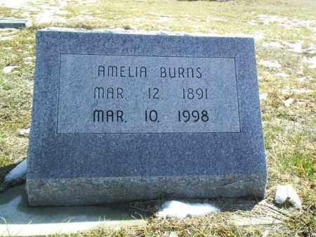 BURNS, AMELIA - Brown County, Nebraska | AMELIA BURNS - Nebraska Gravestone Photos