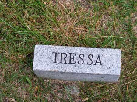 CHENEY, TRESSA - Brown County, Nebraska | TRESSA CHENEY - Nebraska Gravestone Photos