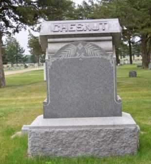 CHESTNUT, FAMILY - Brown County, Nebraska | FAMILY CHESTNUT - Nebraska Gravestone Photos