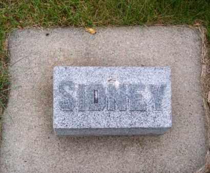 CHESTNUT, SIDNEY - Brown County, Nebraska | SIDNEY CHESTNUT - Nebraska Gravestone Photos