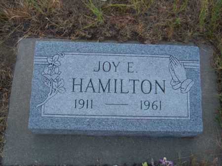 HAMILTON, JOY E. - Brown County, Nebraska | JOY E. HAMILTON - Nebraska Gravestone Photos