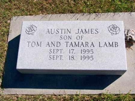 LAMB, AUSTIN JAMES - Brown County, Nebraska | AUSTIN JAMES LAMB - Nebraska Gravestone Photos