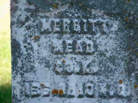 MEAD, MERRITT - Brown County, Nebraska | MERRITT MEAD - Nebraska Gravestone Photos