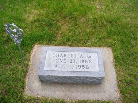 RICHARDSON, CHARLES A. SR. - Brown County, Nebraska | CHARLES A. SR. RICHARDSON - Nebraska Gravestone Photos