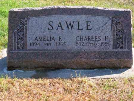 SAWLE, AMELIA F. - Brown County, Nebraska   AMELIA F. SAWLE - Nebraska Gravestone Photos