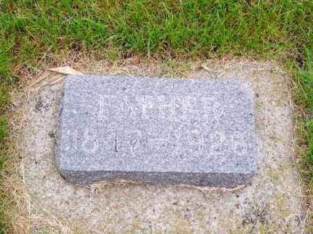 SCHLUETER, ALBERT - Brown County, Nebraska | ALBERT SCHLUETER - Nebraska Gravestone Photos