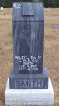 SMITH, WILEY L. - Brown County, Nebraska | WILEY L. SMITH - Nebraska Gravestone Photos
