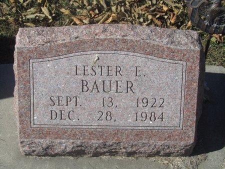 BAUER, LESTER E. - Buffalo County, Nebraska | LESTER E. BAUER - Nebraska Gravestone Photos