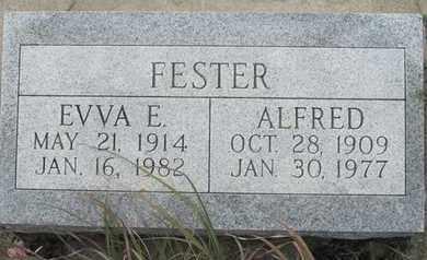 FESTER, ALFRED - Buffalo County, Nebraska | ALFRED FESTER - Nebraska Gravestone Photos